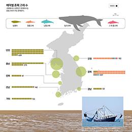 한반도 고래 혼획 보고서