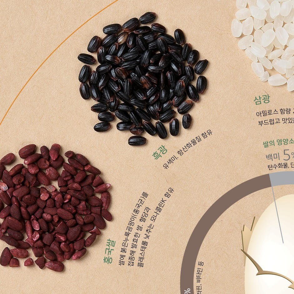 육종으로 다시 태어난 쌀 10선