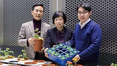 [Career] 미래 도시 농장의 초석을 놓다