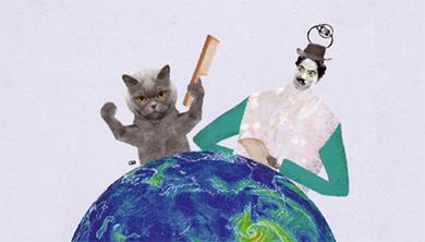 Part 3. [세 번째 실험] 가마가 생기지 않게 고양이 털 빗기