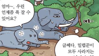 [가상인터뷰] 하루에 2시간 자는 아프리카 코끼리
