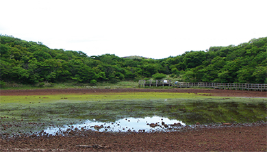 [Origin] '지질조사 어벤져스'의 한라산 비밀의 숲 탐험기