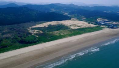 Part 4. 모래, 다양한 생물의 보금자리