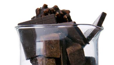 [Culture] '과학 초콜릿' 그뤠잇