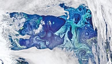[과학뉴스] 2300년 어류 수확량 20% 이상 감소