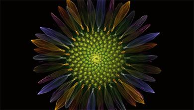 수학동아 단독 특별전시회, 수학으로 피운 꽃