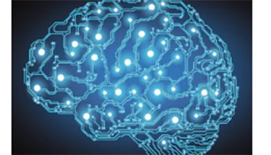 [과학뉴스] 폭력범죄, 뇌 전기자극으로 예방