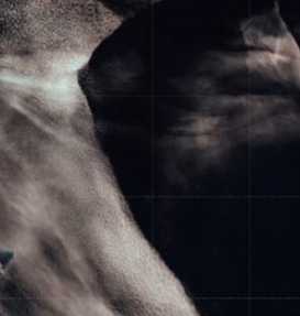 [과학뉴스] 아프리카 거대 구름 미스터리 풀렸다