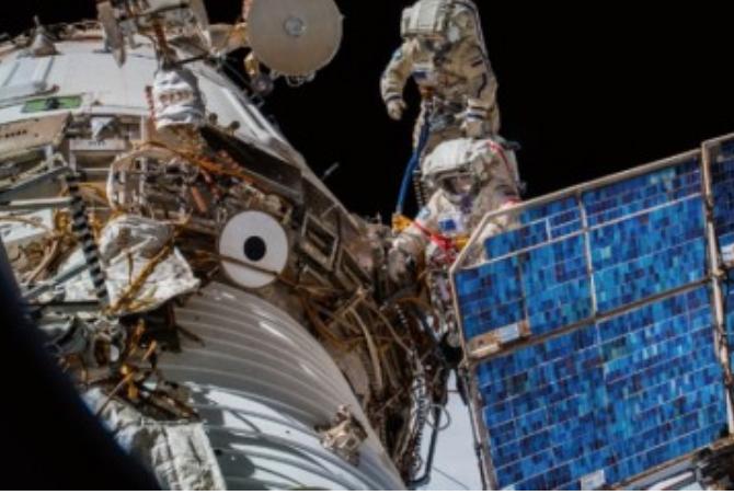 [과학뉴스] 우주에서 지상 동물 추적 '이카루스 계획' 시작