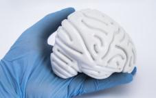 [과학뉴스] 뇌 속 도파민 농도, 실시간으로 측정