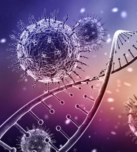 [과학뉴스] 네안데르탈인에게 물려받은'바이러스 저항 유전자'