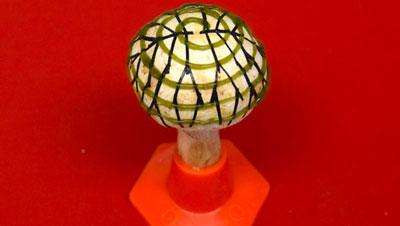[과학뉴스] 박테리아로 전기 생산하는 '바이오닉 버섯'