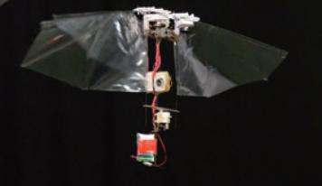 [과학뉴스] 초파리를 닮은 날쌘 비행 로봇 발명!