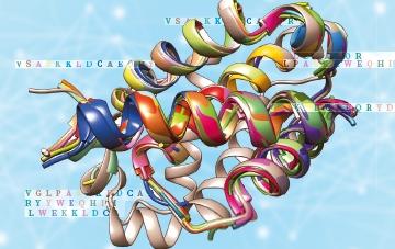 단백질 구조예측 대회1등 '알파고' 후배 '알파폴드'
