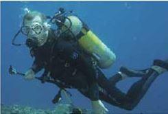상어가족보다 힘센 동물은 인간?