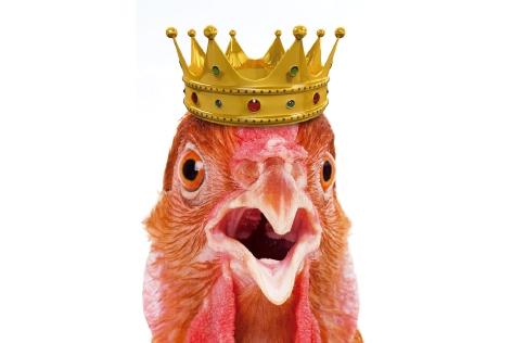 후보3. 소수의 비밀 열쇠는 닭의 눈