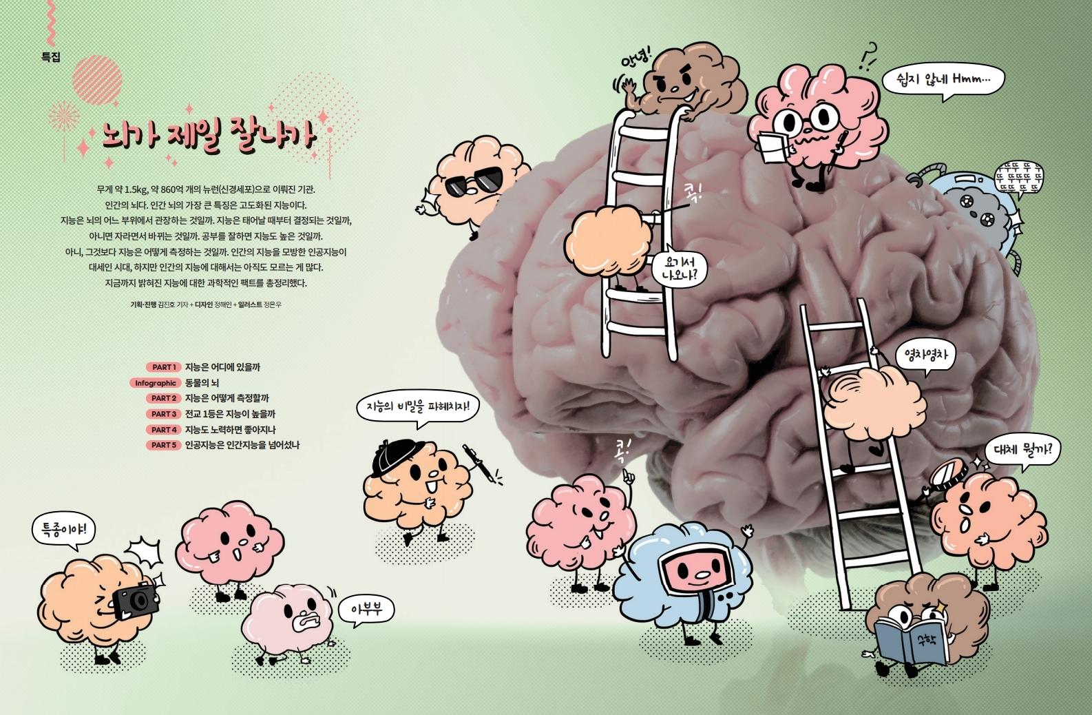 뇌가 제일 잘나가