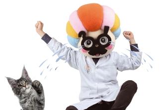 [도전! 섭섭박사 실험실] 왜 나만 고양이 없어? 고양이를 만들어라!