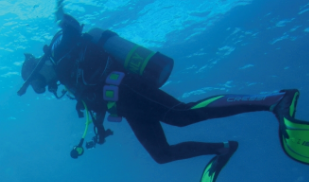 산호와 맹그로브의 천국 태평양해양과학기지에서 꿈을 찾다