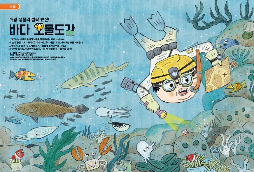해양 생물의 깜짝 변신! 바다 보물도감