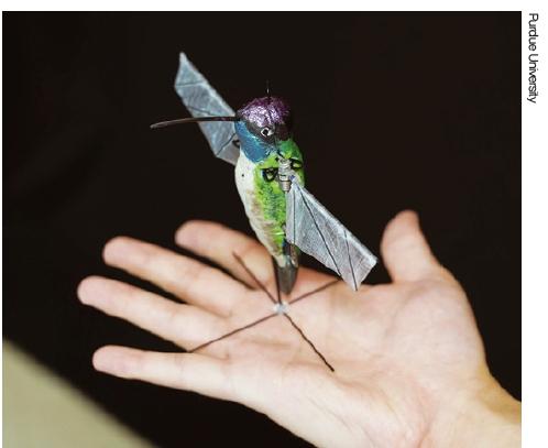 [과학뉴스] 초소형 벌새 로봇 개발