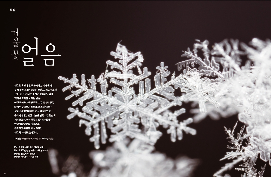 겨울꽃, 얼음
