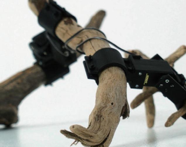 [과학뉴스] 나뭇가지로 로봇을 만든다?!