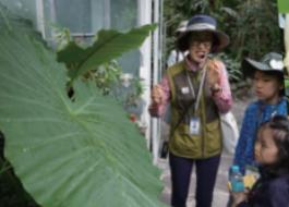 [지구사랑탐사대] 우리 가족 정원 구경해 보실래요? 귀화식물 탐사