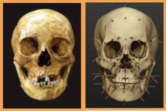 [Go! Go! 고고학자] 뼈로 삼국시대  사람을 되살리다!