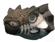 용 닮은 탈라루루스 공룡의 머리, 완벽 복원!
