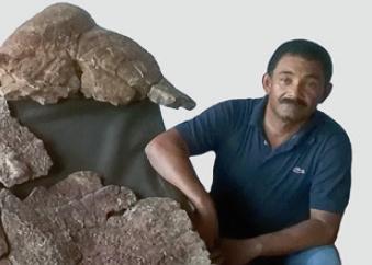 [한페이지 뉴스] 무게 1.1t, 소형차보다 큰 초거대거북