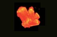 [한페이지 뉴스] 고압에선 이런 모습이? 방사성 원소 퀴륨의 재발견